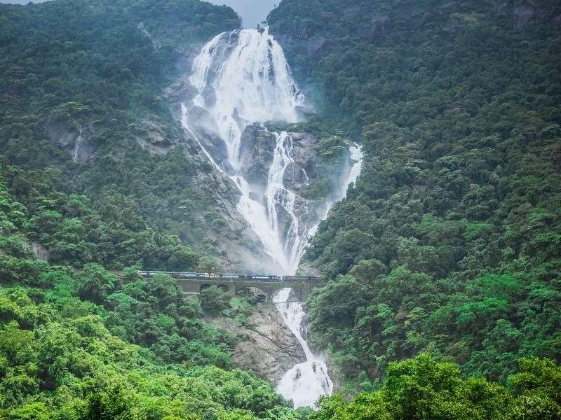 Dudhsagar Waterfalls - Goa