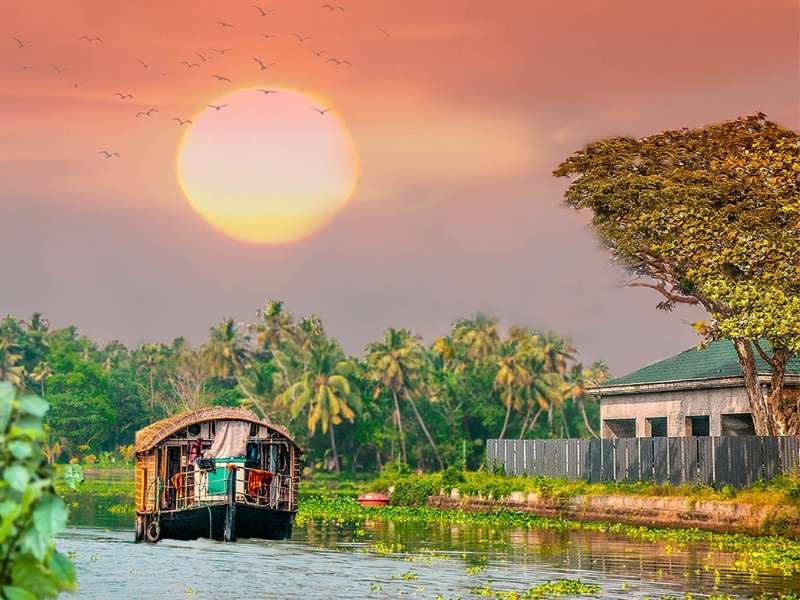 Alleppey, Kerala - Places for nature lovers