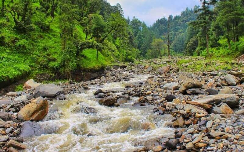 Starting trail of Prashar Lake Trek