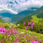 Enchanting Valley of Flowers Trek