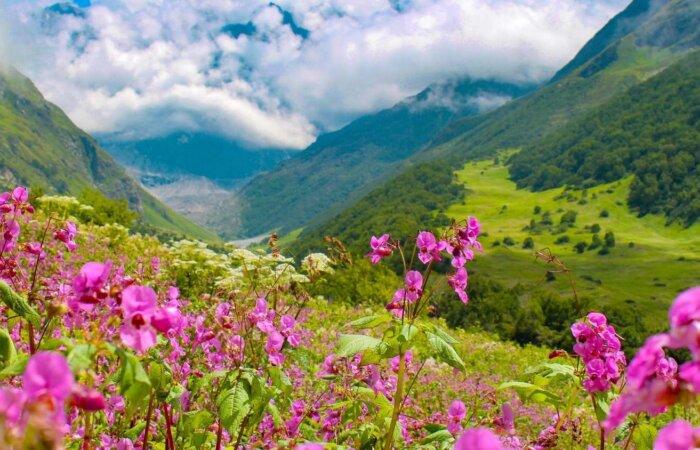 Enchanting Valley of Flowers Trek
