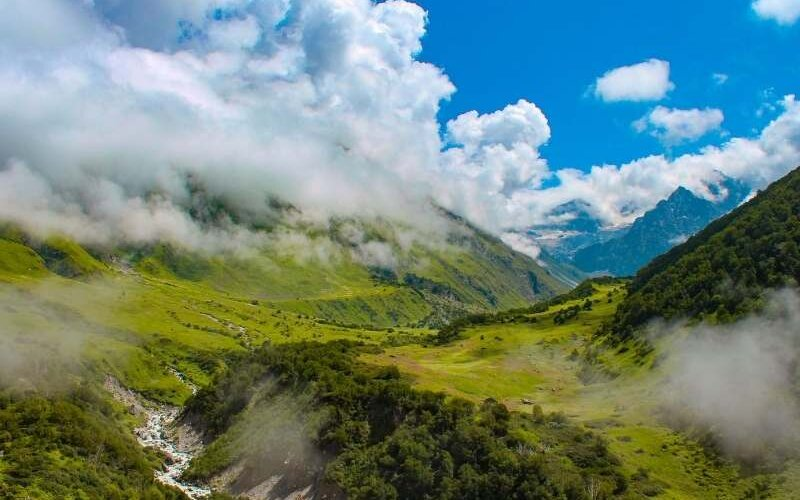 A glimpse of Valley of Flowers
