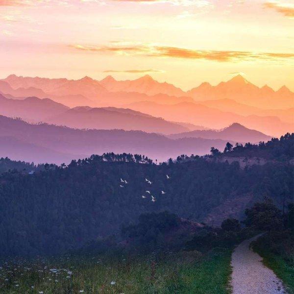 Almora - Uttarakhand