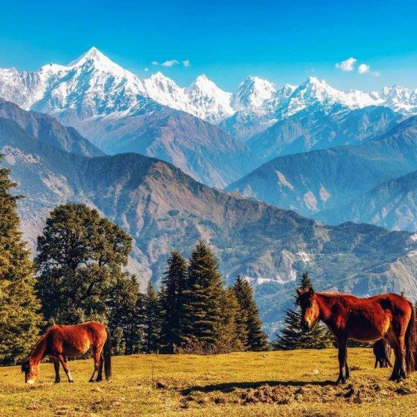 Pithoragarh - Uttarakhand
