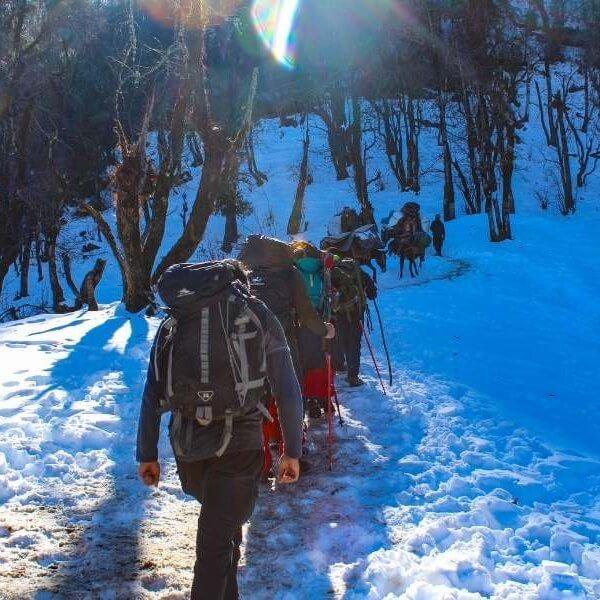 While trekking towards Kedarkantha Base Camp