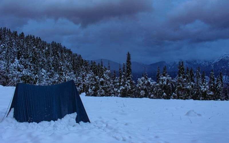 Views after a fresh snowfall - Kedarkantha Trek