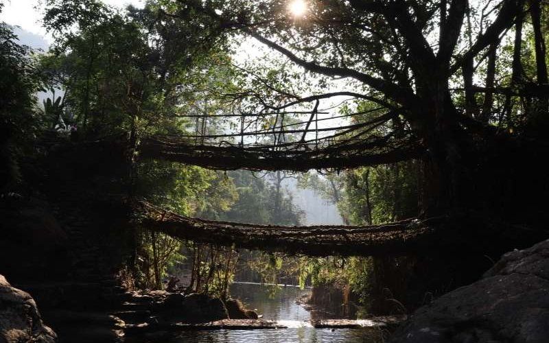 Double Decker Bridge near Cherrapunjee - Meghalaya Tour Package