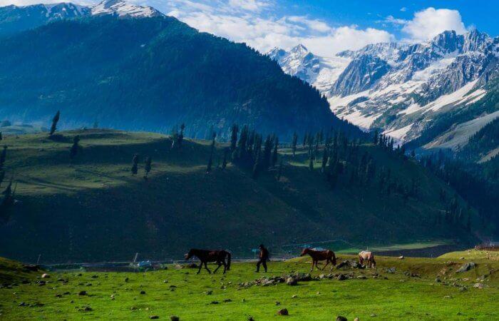 Kashmir Tour - header